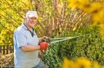 Wie hoch ist der Stundenlohn bei der Gartenhilfe?