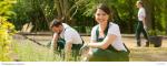 Minijob bei der Gartenilfe – was verdient man?