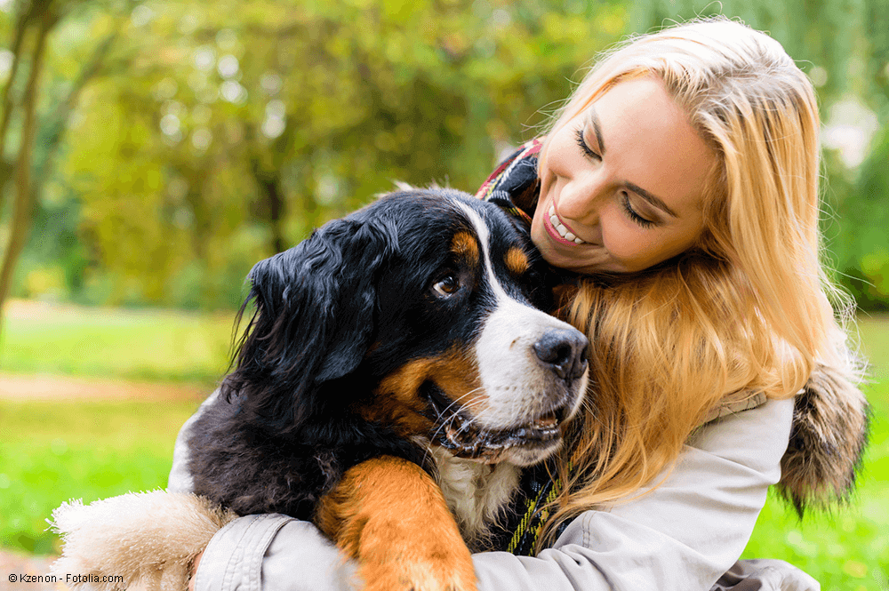need you - Die Betreuerbörse - Tierbetreuung